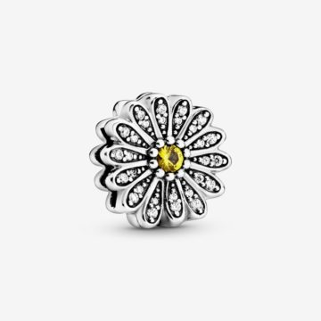 Pandora clip 798766 reflection margriet