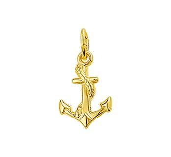 40.18481 Gouden hanger anker