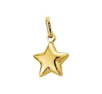 40.18515 Gouden hanger ster
